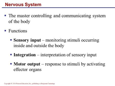 Copyright © 2004 Pearson Education, Inc., publishing as Benjamin Cummings Nervous System  The master controlling and communicating system of the body.