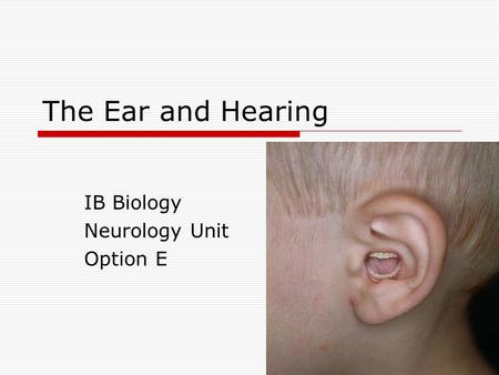 IB Biology Neurology Unit Option E