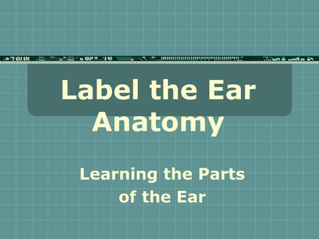 Label the Ear Anatomy Learning the Parts of the Ear.