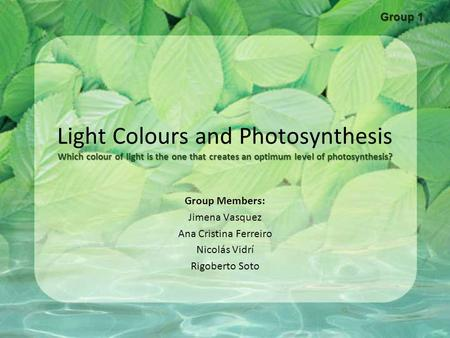 Group 1 Light Colours and Photosynthesis Which colour of light is the one that creates an optimum level of photosynthesis? Group Members: Jimena Vasquez.