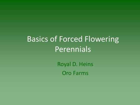 Basics of Forced Flowering Perennials Royal D. Heins Oro Farms.