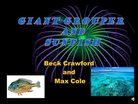 Beck Crawford and Max Cole There are five different groups of animals with vertebrates. Mammals Reptiles Fish They usually have scales and fins. Amphibians.
