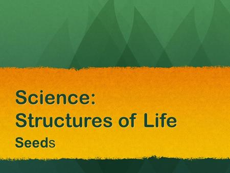 Science: Structures of Life Seeds. Properties Property: the characteristic of an object or something you can observe about an object. Properties can include.