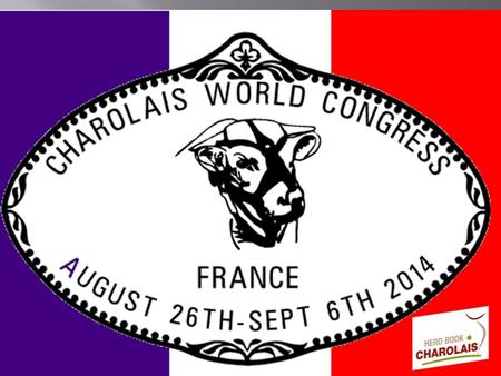  AUGUST :  26th Tuesday : Delegates welcoming and over night in Chantilly areas.  27th Wednesday: visit of Chantilly Castle then drive to Burgundy.