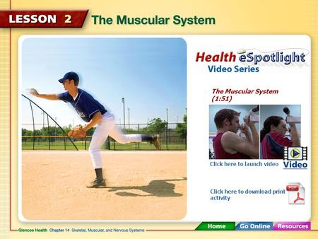 The Muscular System (1:51) Click here to launch video Click here to download print activity.