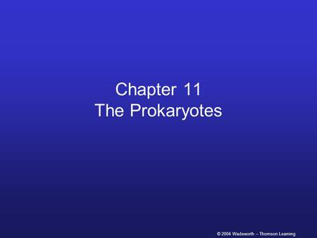 © 2004 Wadsworth – Thomson Learning Chapter 11 The Prokaryotes.