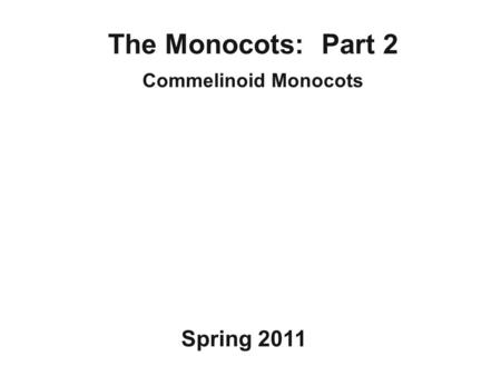 The Monocots: Part 2 Commelinoid Monocots Spring 2011.