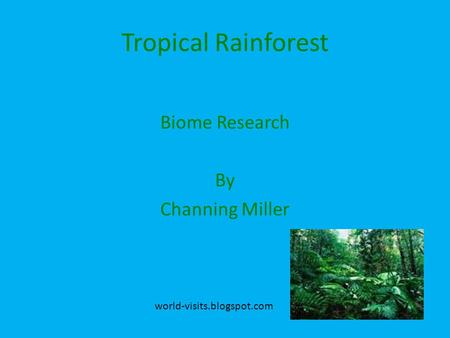 Tropical Rainforest Biome Research By Channing Miller world-visits.blogspot.com.