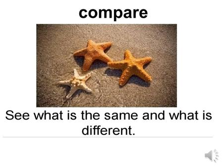 compare shape color the shade you see bigger smaller.
