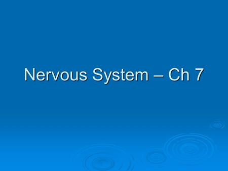 Nervous System – Ch 7. Introduction  Neurons – nerve cells  Transmit information in the form of electrochemical changes (nerve impulses)  Neuron structure.