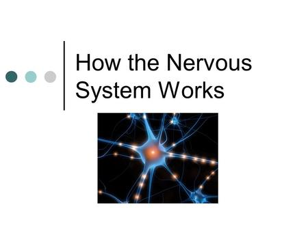 "How the Nervous System Works. Learning goals… 1.Describe the electrochemical ""action potential"". (5 steps on diagram) 2.Justify why nerve signals are."