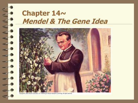 Chapter 14~ Mendel & The Gene Idea. Mendelian genetics 4 Trait –variant for a character ex: purple 4 True-breeding –all offspring same variety 4 Hybridization.
