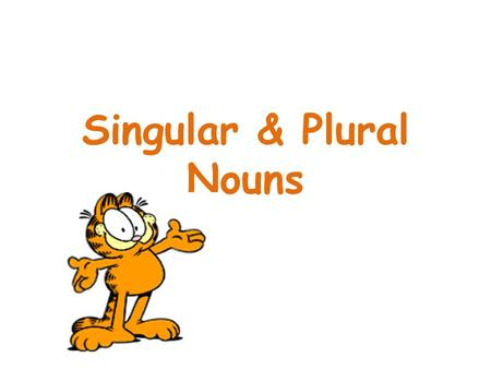 Singular & Plural Nouns. -s book - books boy - boys door – doors cat – cats dog – dogs photo- photos rose - roses eg. There are five books. I've got two.