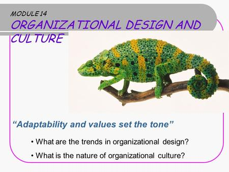 "MODULE 14 ORGANIZATIONAL DESIGN AND CULTURE ""Adaptability and values set the tone"" What are the trends in organizational design? What is the nature of."