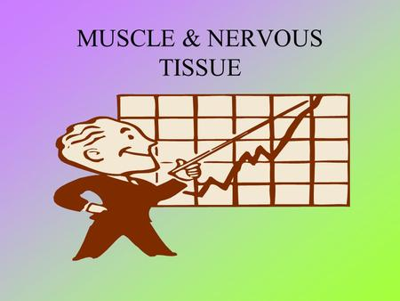 MUSCLE & NERVOUS TISSUE