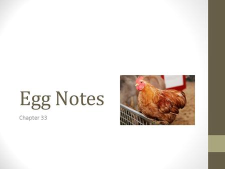 Egg Notes Chapter 33. I.The Basics of Eggs A.Eggs are one of the nature's most versatile, nutritious and economical foods. B.Anatomy of an egg 1. air.