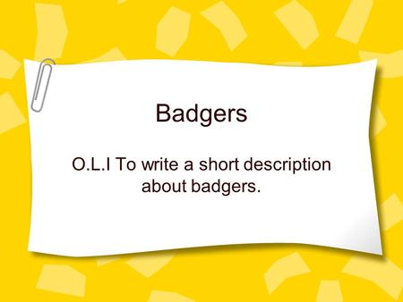 Badgers O.L.I To write a short description about badgers.
