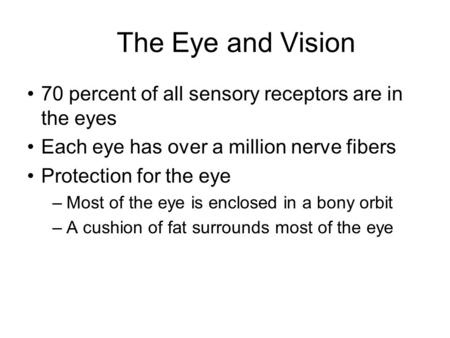 The Eye and Vision 70 percent of all sensory receptors are in the eyes Each eye has over a million nerve fibers Protection for the eye –Most of the eye.