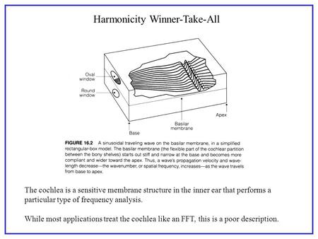 Harmonicity Winner-Take-All The cochlea is a sensitive membrane structure in the inner ear that performs a particular type of frequency analysis. While.