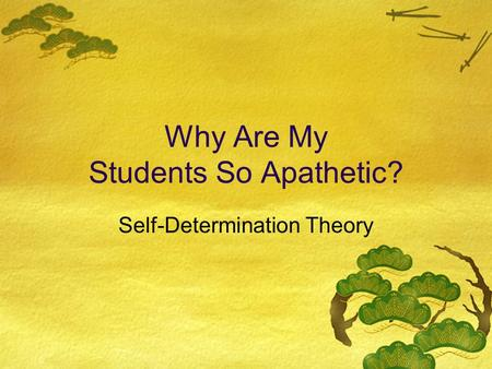 Why Are My Students So Apathetic? Self-Determination Theory.