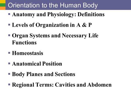 Orientation to the Human Body  Anatomy and Physiology: Definitions  Levels of Organization in A & P  Organ Systems and Necessary Life Functions  Homeostasis.