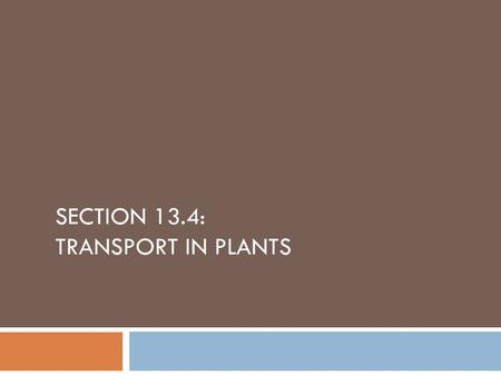 SECTION 13.4: TRANSPORT IN PLANTS. How it works…  Essentially a plant is a tube with its base embedded in the ground (the roots), and leaves are at the.