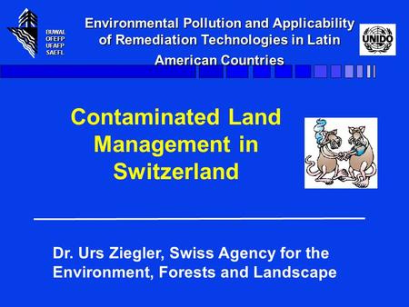 BUWALOFEFPUFAFPSAEFL Environmental Pollution and Applicability of Remediation Technologies in Latin American Countries BUWALOFEFPUFAFPSAEFL Contaminated.