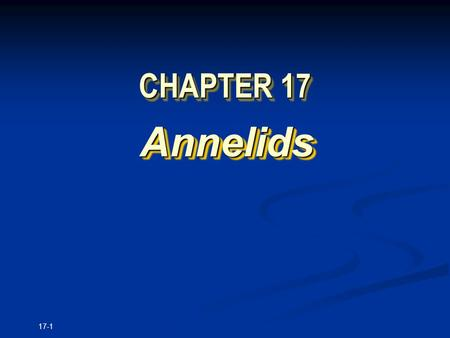 17-1 CHAPTER 17 Annelids Annelids. Copyright © The McGraw-Hill Companies, Inc. Permission required for reproduction or display. 17-2 Characteristics Diversity.