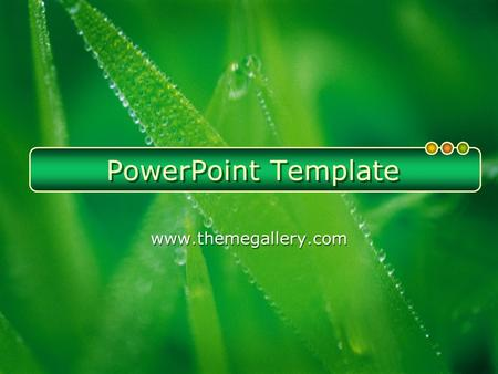PowerPoint Template www.themegallery.com. Click to edit title style  How do I incorporate my logo to a slide that will apply to all the other slides?