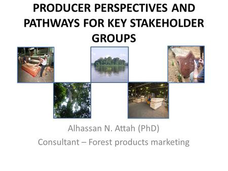 PRODUCER PERSPECTIVES AND PATHWAYS FOR KEY STAKEHOLDER GROUPS Alhassan N. Attah (PhD) Consultant – Forest products marketing.