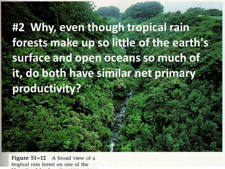 #2 Why, even though tropical rain forests make up so little of the earth's surface and open oceans so much of it, do both have similar net primary productivity?
