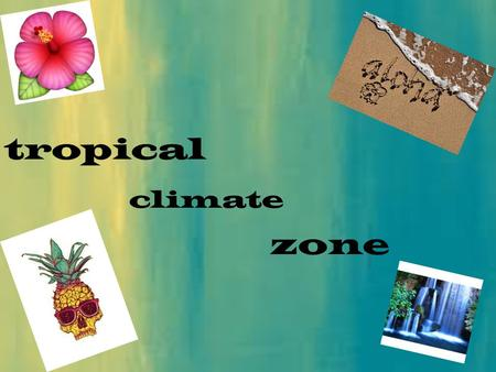 Tropical climate zone. climate  The tropical climate gets its name from the areas along the equator called tropics.  It can be separated into two types.