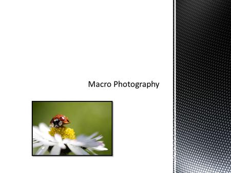 When shooting macro photography, it is important to remember that because of a shallow depth of field, clear focus is very important. Use of a.