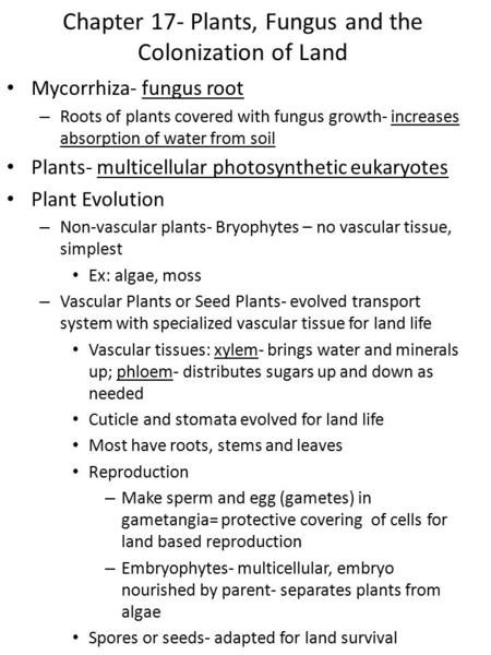 Chapter 17- Plants, Fungus and the Colonization of Land Mycorrhiza- fungus root – Roots of plants covered with fungus growth- increases absorption of water.