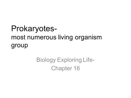 Prokaryotes- most numerous living organism group Biology Exploring Life- Chapter 16.