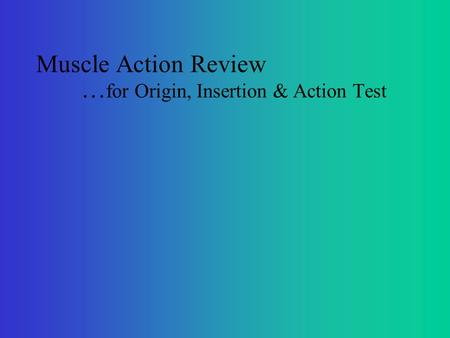 Muscle Action Review … for Origin, Insertion & Action Test.