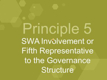 Principle 5 SWA Involvement or Fifth Representative to the Governance Structure.