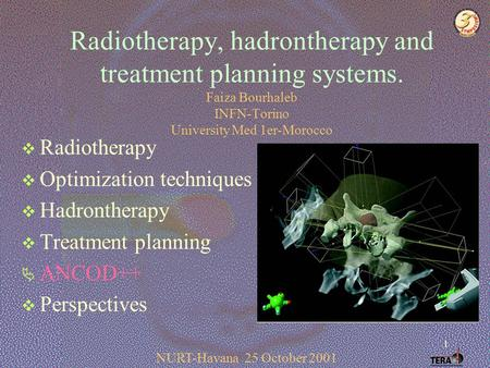 1 Radiotherapy, hadrontherapy and treatment planning systems. Faiza Bourhaleb INFN-Torino University Med 1er-Morocco  Radiotherapy  Optimization techniques.