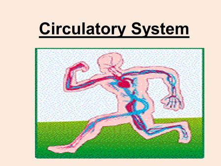 "Circulatory System. Your pigs have been doubly injected (red for arteries, blue for veins) Red arteries = move blood (rich in oxygen) ""Away"" from the."