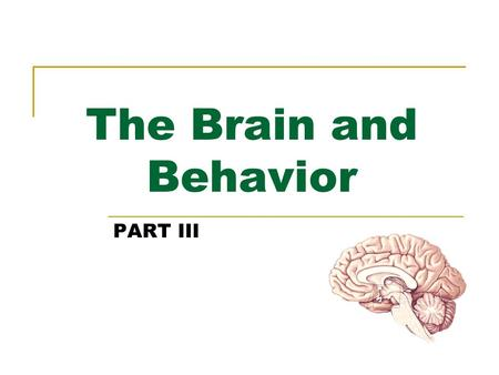 The Brain and Behavior PART III. Chemical Control of the Brain and Behavior Chapter 15.