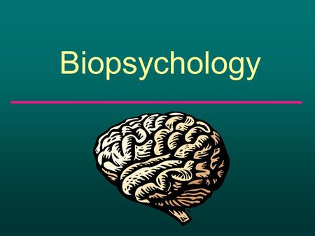 Biopsychology. What makes you, you? What makes you unique from every other person?