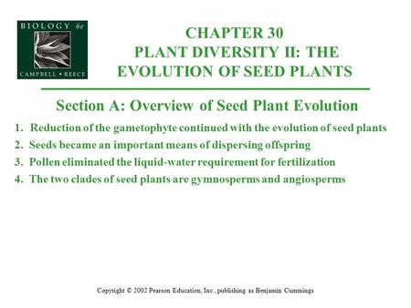 CHAPTER 30 PLANT DIVERSITY II: THE EVOLUTION OF SEED PLANTS Copyright © 2002 Pearson Education, Inc., publishing as Benjamin Cummings Section A: Overview.
