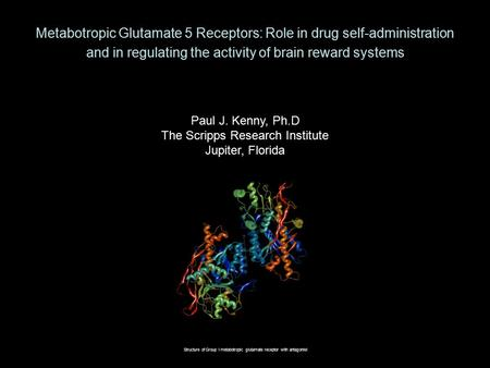 Metabotropic Glutamate 5 Receptors: Role in drug self-administration and in regulating the activity of brain reward systems Paul J. Kenny, Ph.D The Scripps.