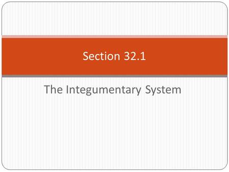 The Integumentary System Section 32.1. The Structure of the Skin  Multilayered organ  Covers and protects the body. 32.1 The Integumentary System.