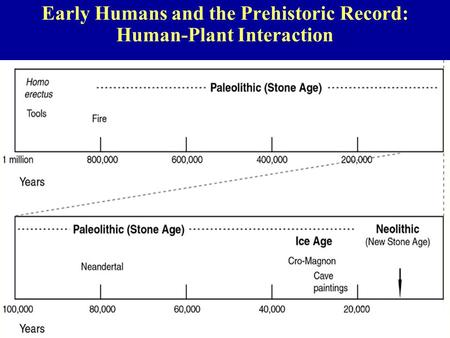 Early Humans and the Prehistoric Record: Human-Plant Interaction.