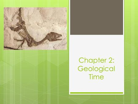 Chapter 2: Geological Time. Fossils  Fossils provide a window into the past as they provide evidence about the changes that have occurred to the Earth.