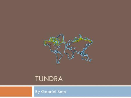TUNDRA By Gabriel Soto. What is the biome a basic definition?  Tundra- A vast, mostly flat, treeless Artic region of Europe, Asia, and North America.