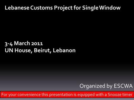 Lebanese Customs Project for Single Window 3-4 March 2011 UN House, Beirut, Lebanon Organized by ESCWA For your convenience this presentation is equipped.