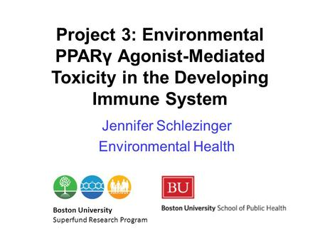 Project 3: Environmental PPARγ Agonist-Mediated Toxicity in the Developing Immune System Jennifer Schlezinger Environmental Health Boston University Superfund.