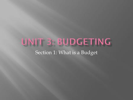 Section 1: What is a Budget.  Distinguish a budget vs. a financial plan  Define: Scarcity, Budget (balanced, deficit, surplus), assets, net worth statement,